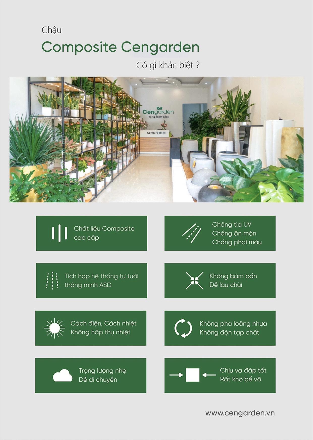 Những ưu điểm vượt trội của chậu trồng cây Vinapot