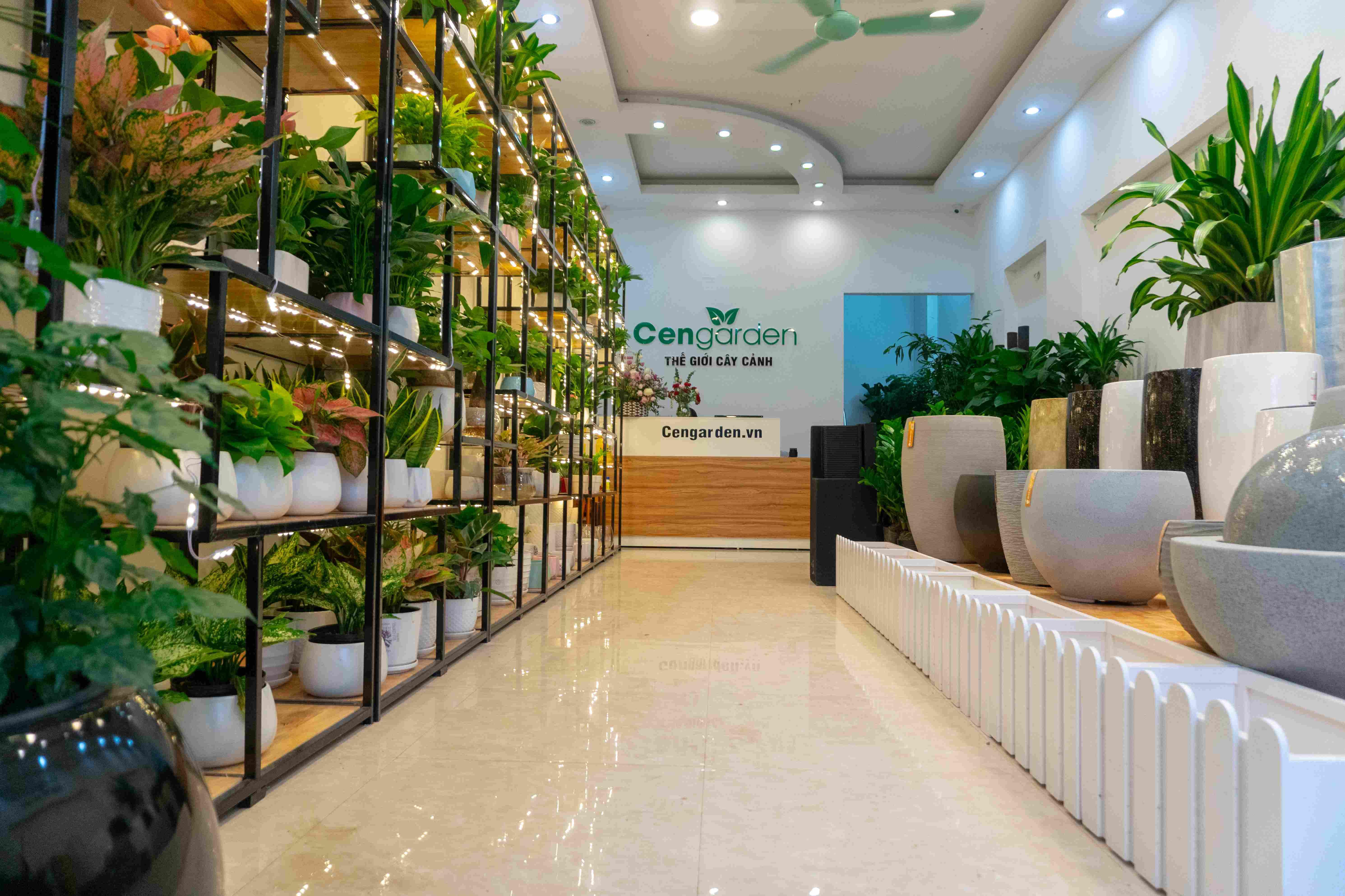 Chậu composite Vinapot đươch phân phối tại cơ sở 18 Nguyễn Chánh